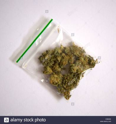 clear-bag-of-cannabis-C5B3AE