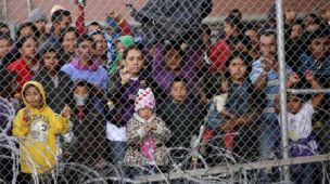 kids_in_cages_2